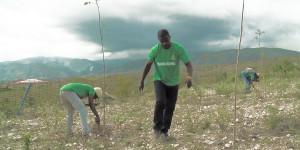 RT_Haiti Photo
