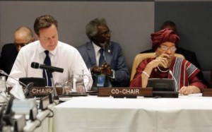 British Prime Minister David Cameron and Liberian President Ellen Johnson Sirleaf, members of the United Nations High-Level Panel on Global Sustainability, met in New York in May 2013 to discuss the Post-2015 Development Agenda